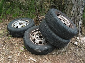 Car tires illegally abandoned in a forest.