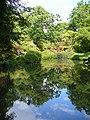 Top Pond, Exbury Garden - geograph.org.uk - 450057.jpg