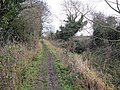 Towpath to East Challow - geograph.org.uk - 1639601.jpg