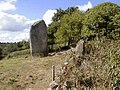 Trégrom. Menhir de Kerscot.jpg