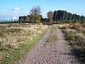 Track To Fairoak Lodge - geograph.org.uk - 274294.jpg