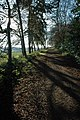Track at the foot of Chase End Hill - geograph.org.uk - 1627606.jpg