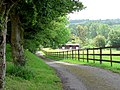 Track to Cherry Tree Cottage - geograph.org.uk - 451279.jpg