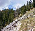 Trail Black Lake - Double Lake 2.jpg