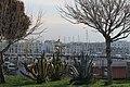 Trani, Puglia - panoramio (33).jpg