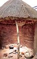 Transvaal Museum-018.jpg