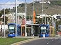 Tranvía de Tenerife2.jpg