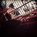 Tresor Nightclub Berlin DJ 23.jpg