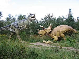 Cultural depictions of dinosaurs - Models recreating a fight between Triceratops and Tyrannosaurus rex. Epic battles that might have occurred are a popular theme.