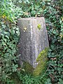 Trig Point - Burton Reservoir - geograph.org.uk - 1585585.jpg