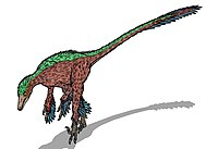 Troodon formosus (feathers).JPG