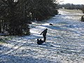 Trying to sledge - geograph.org.uk - 9974.jpg