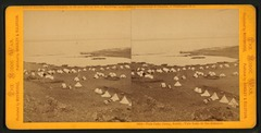 Tule Lake Camp, South; Tule Lake in the distance (NYPL b11708169-G91F396 013F).tiff