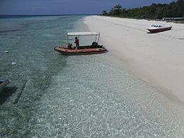 Testudstrando Pom Pom Island.JPG