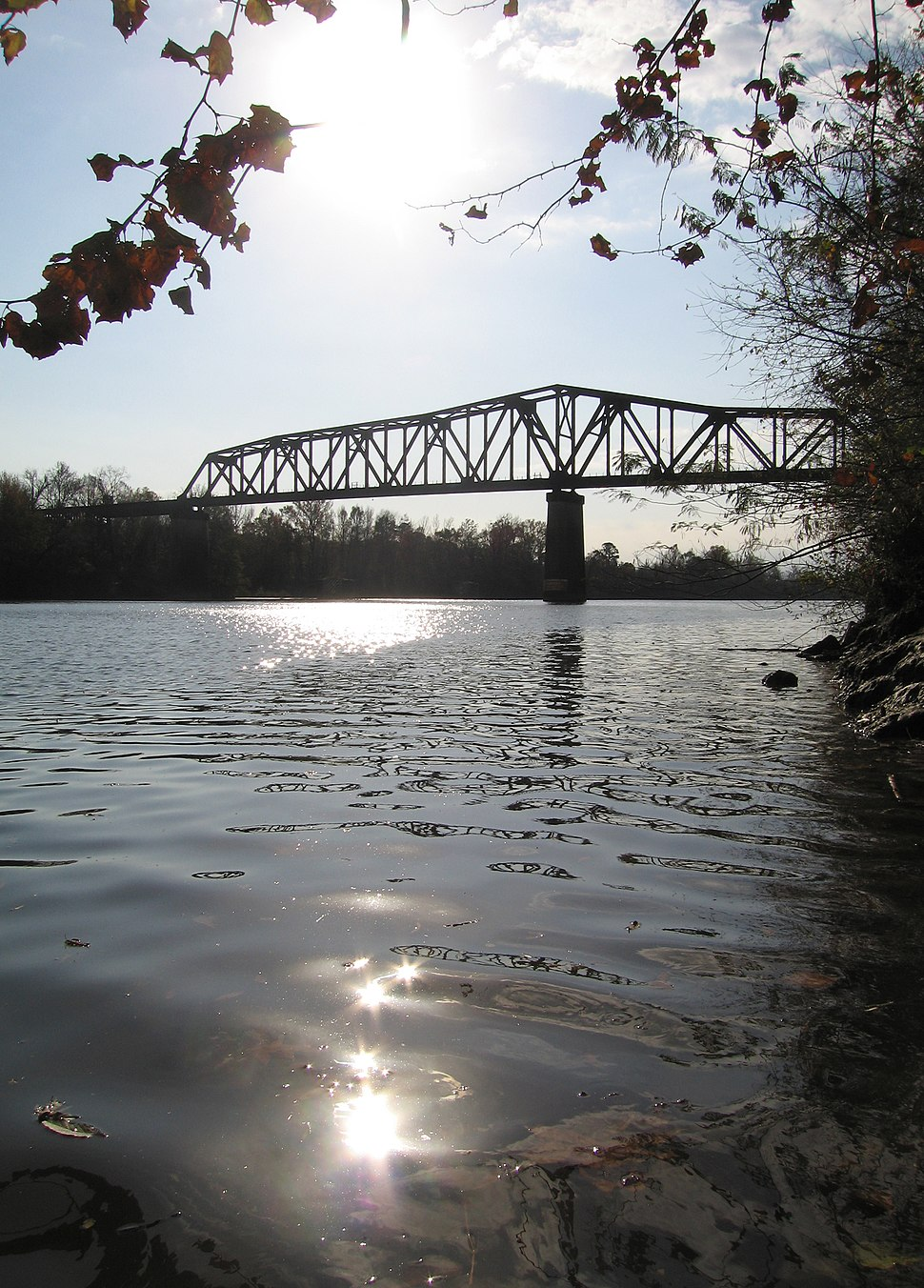 Tuscaloosa black warrior river
