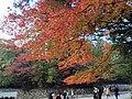 Ujitachicho, Ise, Mie Prefecture 516-0023, Japan - panoramio (11).jpg