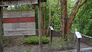 Arboretum Norr - Arboretum Norr