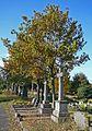 Undercliffe Cemetery 2 (4016942545).jpg