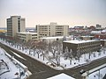 University of Alberta Snow on Campus.JPG