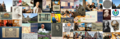 University of Edinburgh Wikimedian in Residence Collage.png