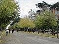 Urban park, Madrid's Parque del Retiro (6382398435).jpg