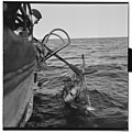Vårfiske på Vardø - L0049 770Fo30141609280097.jpg