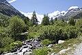 Vadret da Morteratsch - panoramio (39).jpg