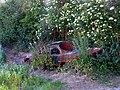 Vandalised Motor vehicle in Farmland - geograph.org.uk - 20835.jpg