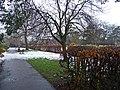 Victoria Park, London N3 - geograph.org.uk - 1151741.jpg