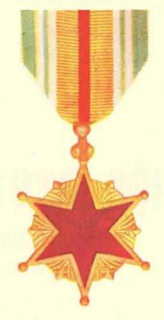 Wound Medal (Vietnam) - Wound Medal