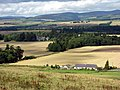 View from Finavon Hill - geograph.org.uk - 253014.jpg