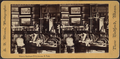 View in Residence, Fifth Avenue, N.Y, from Robert N. Dennis collection of stereoscopic views 2.png