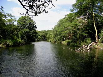 Tsavo River - View of the Tsavo River in Tsavo West National Park