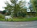 Village pond - geograph.org.uk - 231358.jpg