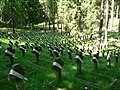 Vilnius Antokol cemetery.jpg