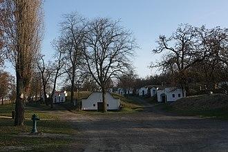 Czech wine - Traditional wine cellars in Petrov, near Strážnice, Southern Moravia