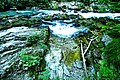 Vintgar Gorge (34972141884).jpg