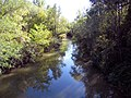 Vista fiume Idice.jpg