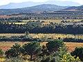 Vue vers le Sud de la campagne de Montauriol, à l'Est de la commune, depuis l'Olivette du Puig Rabiol, un après-midi d'automne..jpg