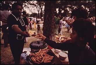 Washington Park, Chicago (community area) - Picnic in Washington Park, 1973.  Photo by John H. White.
