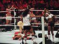 WWE Raw img 2168 (5188323420).jpg