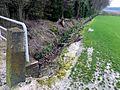 Wanderung 01 April 2017 Duesseldorf (V-0980-2017).jpg