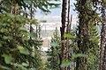 Wapta Falls Trail IMG 4997.JPG