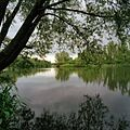 Water nabij het Biesboschmuseum - Unknown - 20381473 - RCE.jpg