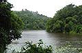 Wayanad Pookkode Lake.jpg