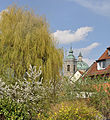 Weingarten Blick zur Basilika.jpg