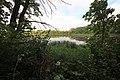 Wetland (15144581998).jpg