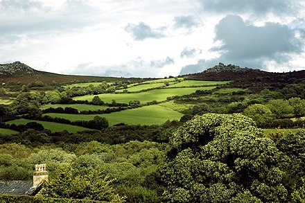 Terrain of Dartmoor, Devon Widecombe in the Moor, Devon.jpg