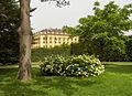 Wien.Schönbrunn10.jpg