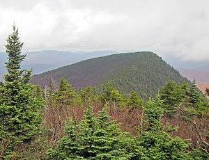 Wittenberg Mountain - Wittenberg from near the summit of neighboring Cornell Mountain